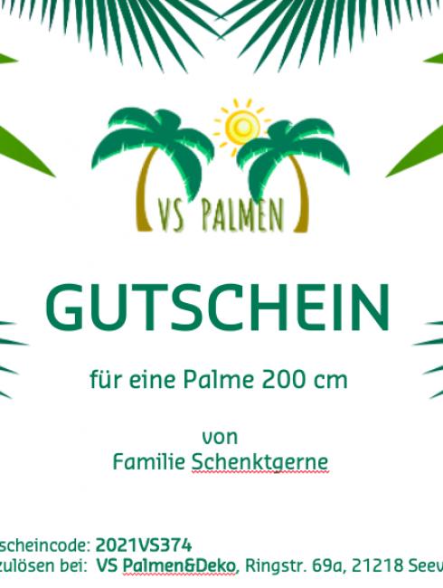 Gutschein-VS-Palmen-Muster